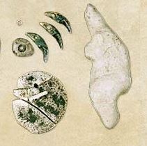 Epoca paleolitică
